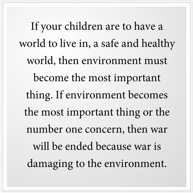if the natural environment becomes the most important thing