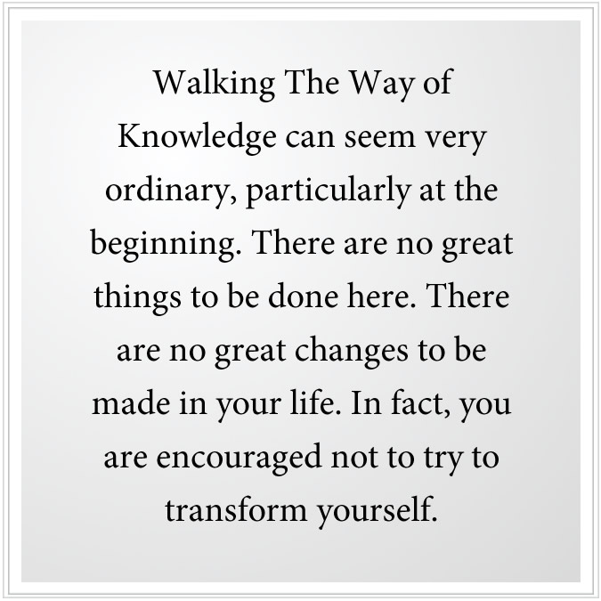 walking the way of knowledge